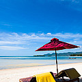 Tanning beds on a tropical beach Koh samui Thailand Poster by Fototrav Print