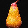 Tears Of A Sad Pear Poster by Andee Photography