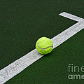Tennis - The Baseline Print by Paul Ward