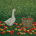 The Apple Basket Print by Ditz