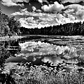 The Beautiful Fly Pond on Rondaxe Road - Old Forge NY Print by David Patterson