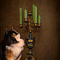 The Cat and the Candelabra Print by Jai Johnson