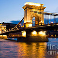 The Chain Bridge in Budapest lit by the street lights Print by Kiril Stanchev