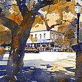 The College Street Oak Print by Iain Stewart