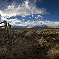The Corral Print by Sean Foster