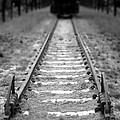 The End of the Line Print by Olivier Le Queinec