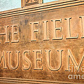 The Field Museum Sign in Chicago Illinois Poster by Paul Velgos