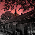 The General Store in Luckenbach Texas Poster by Susanne Van Hulst