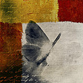 The Giant Butterfly and the Moon - s09-22cbrt Print by Variance Collections