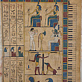 The Graceland Papyrus Print by Richard Deurer