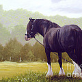 The grass is greener  Print by John Silver