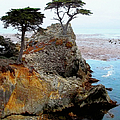 The Lone Cypress - Pebble Beach Print by Glenn McCarthy Art and Photography