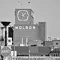 The Molson Clock Montreal Poster by Reb Frost