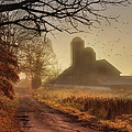 The Road to Amish Country Poster by Lori Deiter