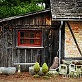 The Shed at Monches Farm Poster by Mary Machare