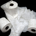 The Spare Rolls 3 - Toilet Paper - Bathroom Design - Restroom - Powder Room Poster by Andee Design