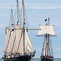 The Tall Ships Poster by Dale Kincaid