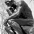 The Thinker in Black and White Print by Lisa  Phillips