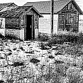 The Tool  Shed Print by Baywest Imaging