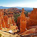 Thor's Hammer at Bryce Canyon Print by Alex Cassels