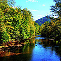 Three Forks Williams River Early Fall Poster by Thomas R Fletcher