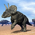Three Nedoceratops In The Desert Poster by Elena Duvernay
