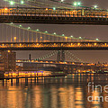 Three New York Bridges Poster by Clarence Holmes