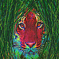 tiger in the grass Poster by Jane Schnetlage