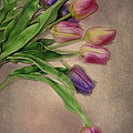 Tip Toe thru the Tulips Print by Mary Timman