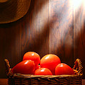 Tomatoes at an Old Farm Stand Print by Olivier Le Queinec