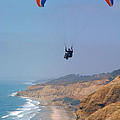 Torrey Pines Paragliders Poster by Anna Lisa Yoder
