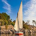 Traditional Egyptian Sailboat on the Nile Print by Mark Tisdale
