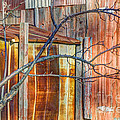 Tree and rust Poster by Jim Wright