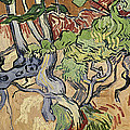 Tree Roots Print by Vincent Van Gogh