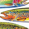Trout Abstraction Poster by JQ Licensing