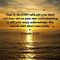 Trust in the LORD  Print by Barbara Snyder