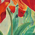 Tulips and Pushkinia Upper Detail Poster by Anna Lisa Yoder