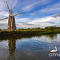Turf Fen Drainage Mill Print by Louise Heusinkveld