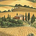 Tuscan Gold  Print by Michael Swanson