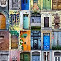 Twenty Four French Doors Collage Print by Georgia Fowler