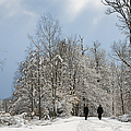 Two people doing a walk in beautiful forest in winter Poster by Matthias Hauser