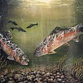 Two Rainbow Trout Print by Donna Tucker