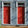 Two Red Doors Poster by Mel Steinhauer
