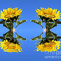 Two sunflowers Poster by Sven Pfeiffer