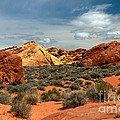 Valley Of Fire Print by Robert Bales