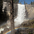 Vernal Falls with rainbow Poster by Jane Rix