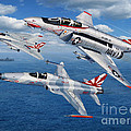 VF-111 Sundowners Heritage Print by Stu Shepherd