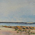 View of Harkness Park from Seaside Waterford CT Poster by Patty Kay Hall