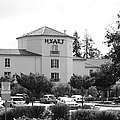 Vineyard Creek Hyatt Hotel Santa Rosa California 5D25866 bw Poster by Wingsdomain Art and Photography