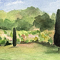 Vineyard in Provence Watercolor Paintings of France Poster by Beverly Brown Prints
